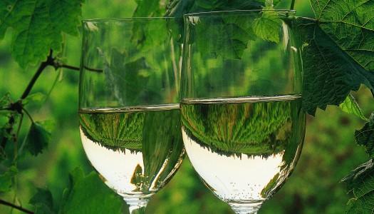 Vinibuoni & Verallia per la sostenibilità