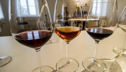 Wine&vine