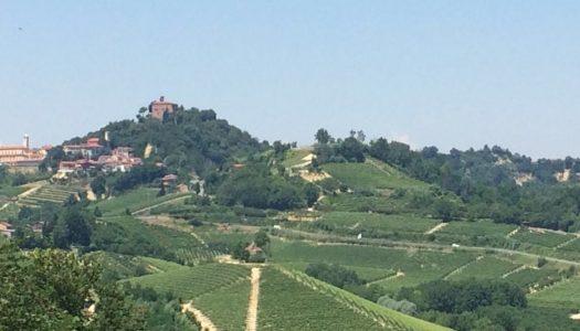Le commissioni del Piemonte in visita nel Roero