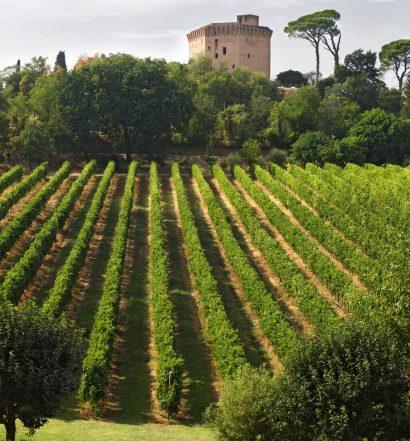centesimino credit Enoteca Regionale Emilia Romagna