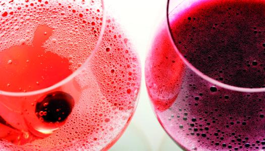 Lambrusco, il vino più antico e più moderno