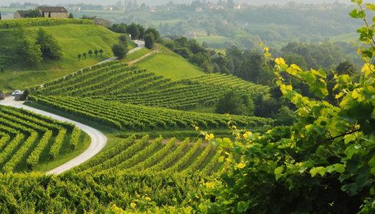 Vinibuoni d'Italia e Smartmobility